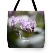 Cyclamen At Lachish 1 Tote Bag