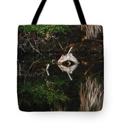 Cyclops In Reflection Tote Bag