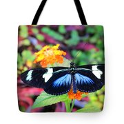 Cydno Longwing Butterfly Tote Bag