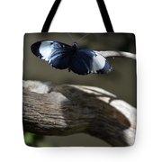 Cydno Longwing Tote Bag