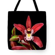 Cymbidium Orchid 001 Tote Bag