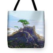 Cypress At Carmel Tote Bag