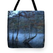 Cypress Awakening Tote Bag by Tamyra Ayles