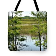 Cypress Dome Tote Bag