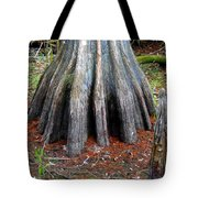 Cypress Footprint Tote Bag