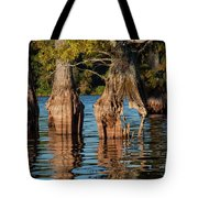 Cypress Grove One Tote Bag