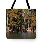 Cypress Grove Five Tote Bag