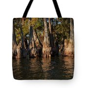 Cypress Grove Two Tote Bag