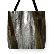 Cypress In The Bayou Tote Bag
