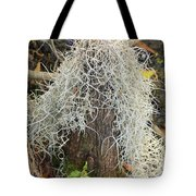 Cypress Knee Draped With Moss Tote Bag