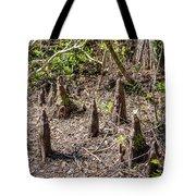 Cypress Knees Tote Bag