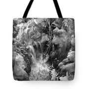 Cypress Knees II Tote Bag