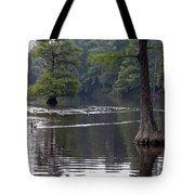 Cypress Lake Tote Bag
