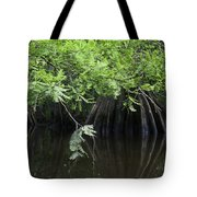 Cypress Leaves And Fluted Trunks Tote Bag