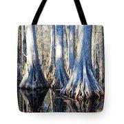 Cypress Reflection Tote Bag
