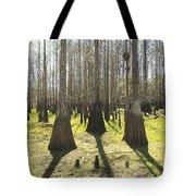 Cypress Sentinals Tote Bag
