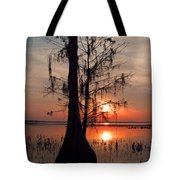 Cypress Sunset Tote Bag