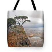 Cypress Tree At Pebble Beach Tote Bag