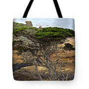 Cypress Tree In Point Lobos State Reserve Near Monterey-california  Tote Bag