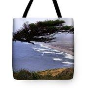 Cypress View Tote Bag