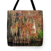 Cypress Winter Colors Tote Bag