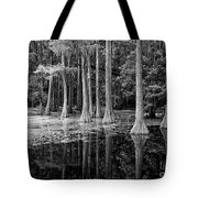 Cypresses In Tallahassee Black And White Tote Bag