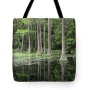 Cypresses In Tallahassee Tote Bag