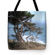 Cypress On The Cliff 15 Tote Bag