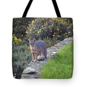 D-a0037 Gray Fox On Our Property Tote Bag