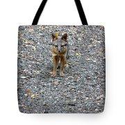 D-a0051-dc Gray Fox Pup Tote Bag