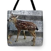 D-a0069 Mule Deer Fawn On Our Property On Sonoma Mountain Tote Bag
