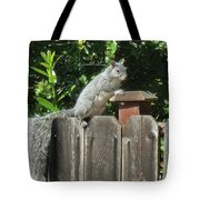D-a0071-e-dc Gray Squirrel On Our Fence Tote Bag