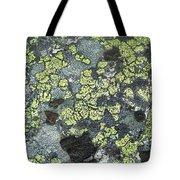 D07343-dc Lichen On Rock Tote Bag