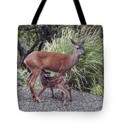 D2b6314 Fawn And Deer Mom Tote Bag