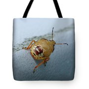 D2b6336-dc Colorful Insect On Sonoma Mountain Tote Bag