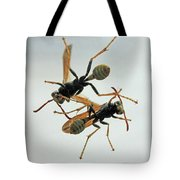 D2b6337 Wasps On Sonoma Mountain Tote Bag