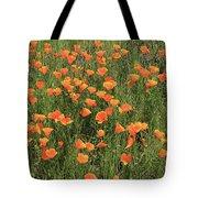 d7b6307 California Poppies Tote Bag