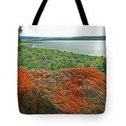 Da5869 Lichen Covered Rock Tote Bag