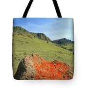 Da5872 Lichen Covered Rock Below Abert Rim Tote Bag