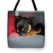 Dachshund Dog, Pug Dog, Good Time On Bed, Sleeping Tote Bag