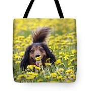 Dachshund On A Meadow In Bloom Tote Bag