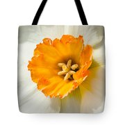 Daffodil Narcissus Flower Tote Bag