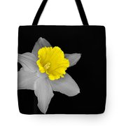Daffo The Dilly Isolation Tote Bag