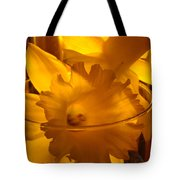 Daffodiil Flowers Evening Glow 9 Contemporary Modern Art Print Giclee Tote Bag