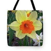 Daffodil 0796 Tote Bag