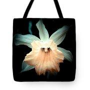 Daffodil #19 Tote Bag