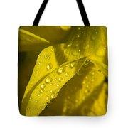 Daffodil Dew Tote Bag