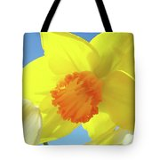 Daffodil Flowers Artwork 18 Spring Daffodils Art Prints Floral Artwork Tote Bag by Baslee Troutman