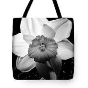 Daffodil In Springtime Tote Bag