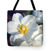 Daffodil Up Close Tote Bag